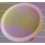 KC6-TR16 Ceiling Speaker (Shipping Contact Seller)